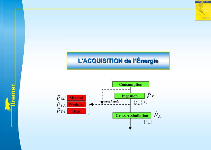 L'ACQUISITION de l'Énergie