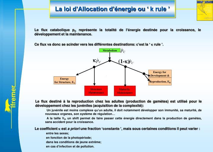 La loi d'Allocation d'énergie ou 'k rule'