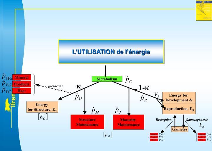 L'UTILISATION de l'énergie