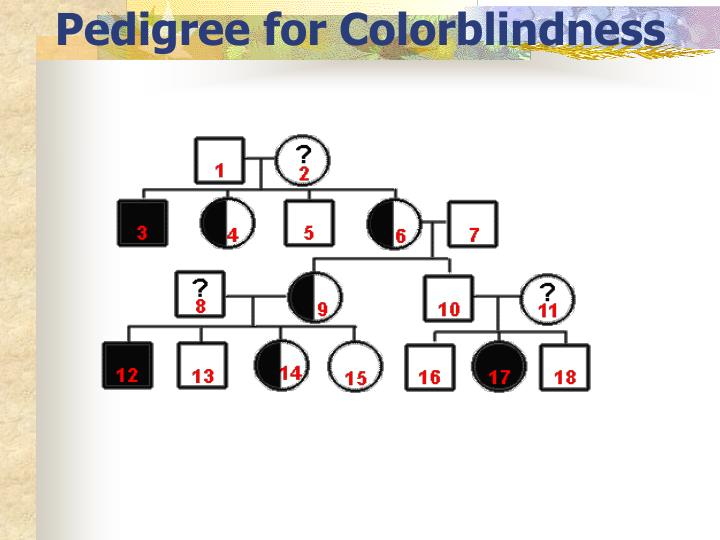 Pedigree for Colorblindness