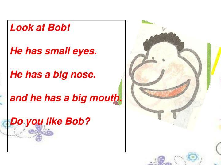 Look at Bob!