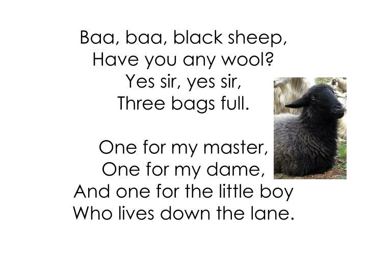 Baa, baa, black sheep,