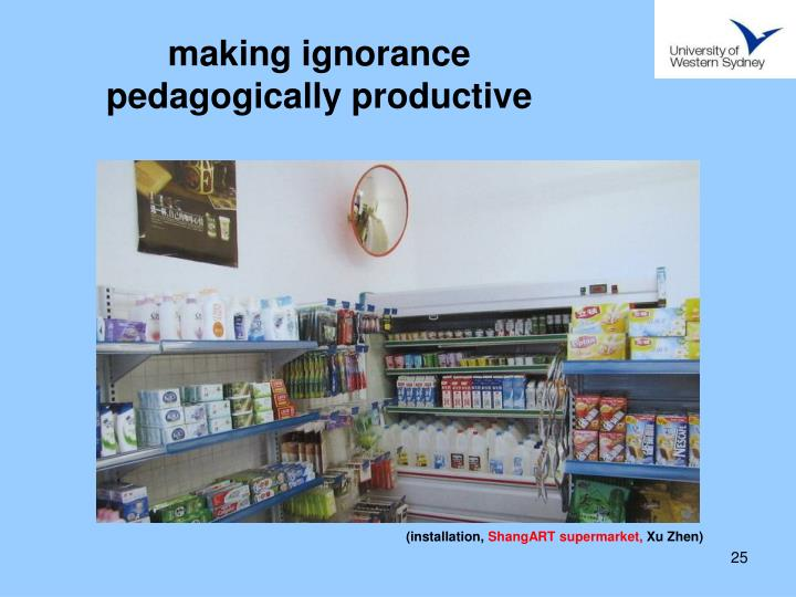 making ignorance pedagogically productive