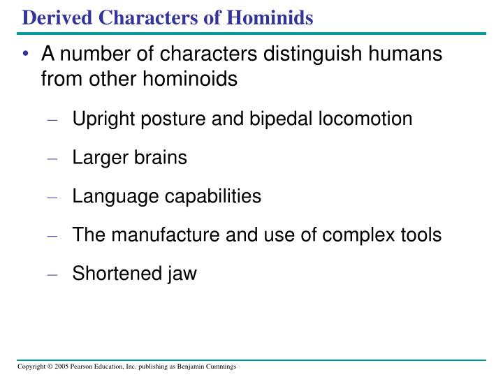 Derived Characters of Hominids