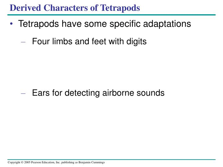 Derived Characters of Tetrapods
