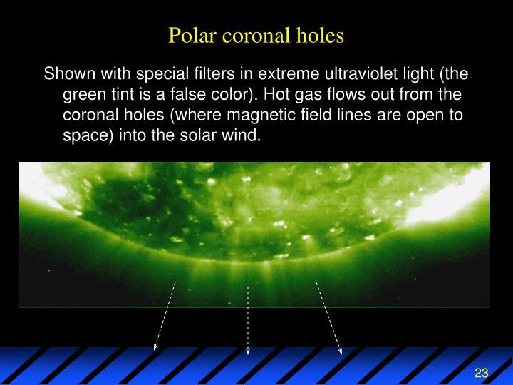 Polar coronal holes