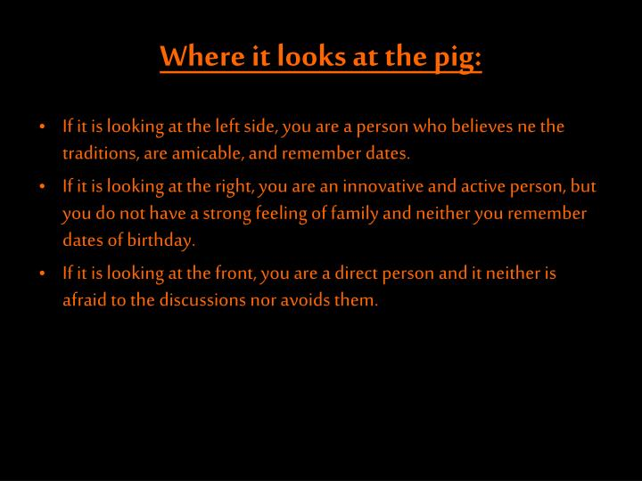 Where it looks at the pig: