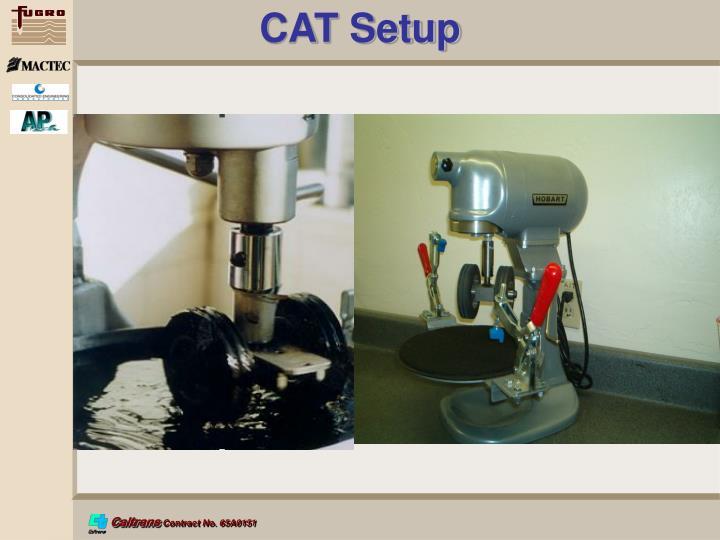 CAT Setup