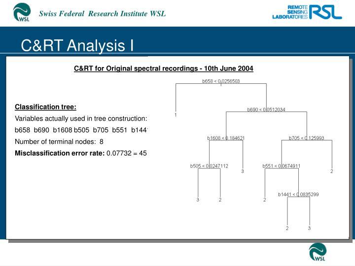 C&RT Analysis I
