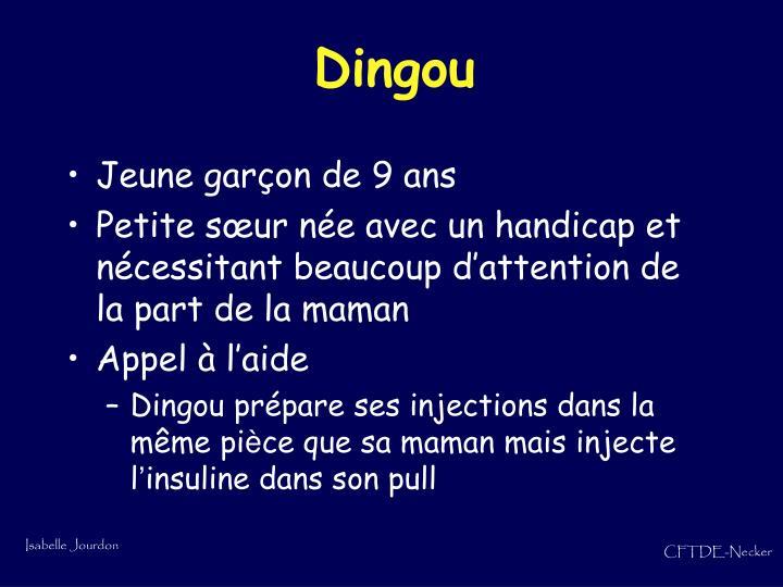 Dingou