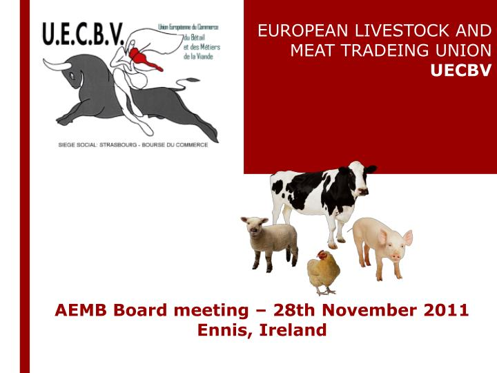Aemb board meeting 28th november 2011 ennis ireland
