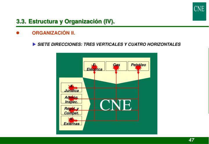 3.3. Estructura y Organización (IV).