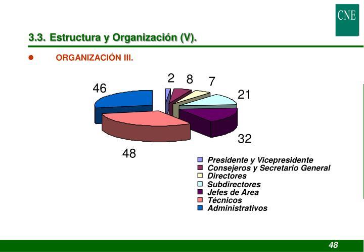 3.3. Estructura y Organización (V).