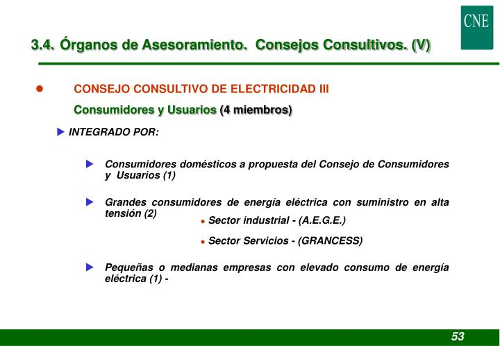 3.4. Órganos de Asesoramiento.  Consejos Consultivos. (V)