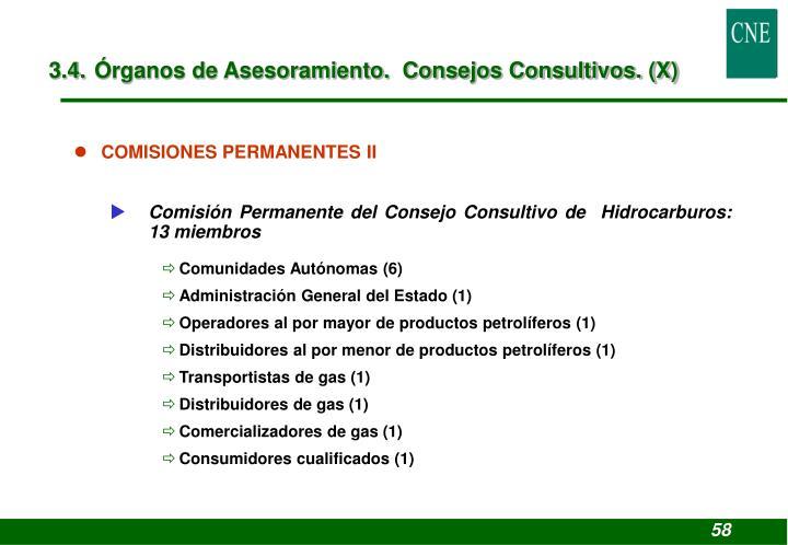 3.4. Órganos de Asesoramiento.  Consejos Consultivos. (X)