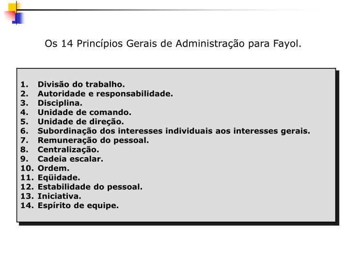 Os 14 Princípios Gerais de Administração para Fayol.
