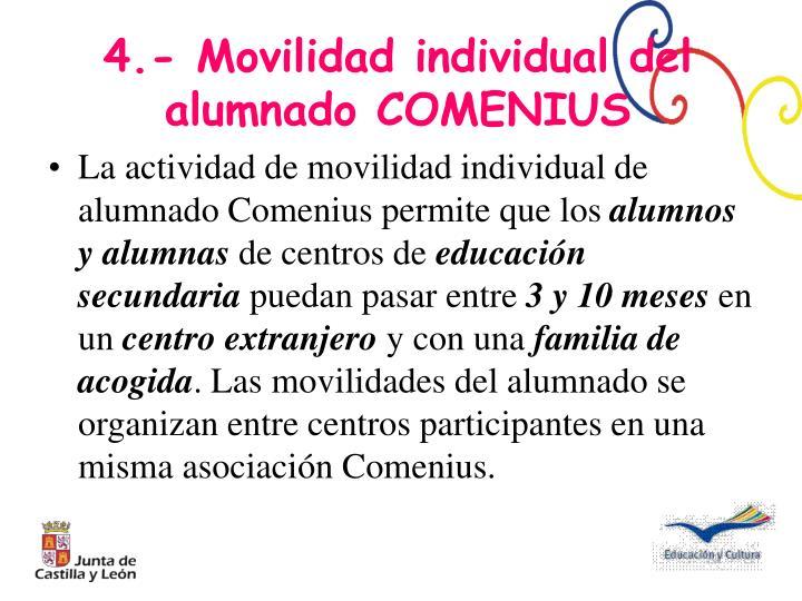 La actividad de movilidad individual de alumnado Comenius permite que los