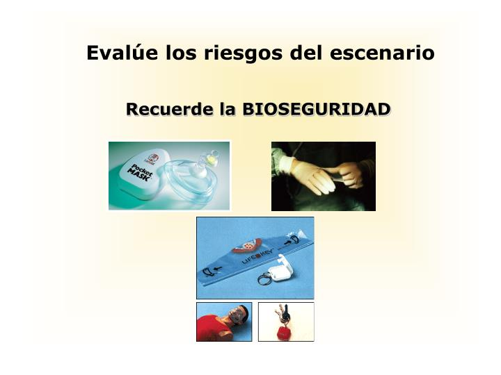 PPT - Reanimación Cardiopulmonar RCP Avanzado PowerPoint ...