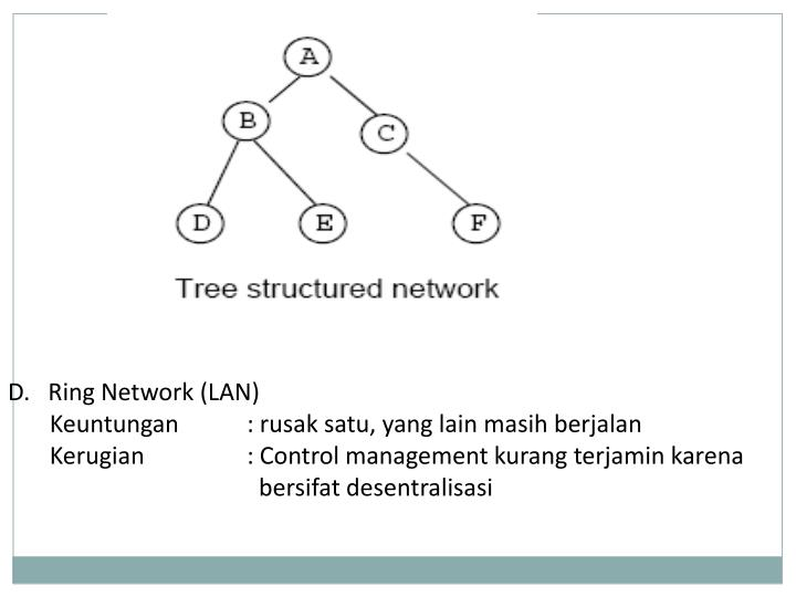 D.   Ring Network (LAN)