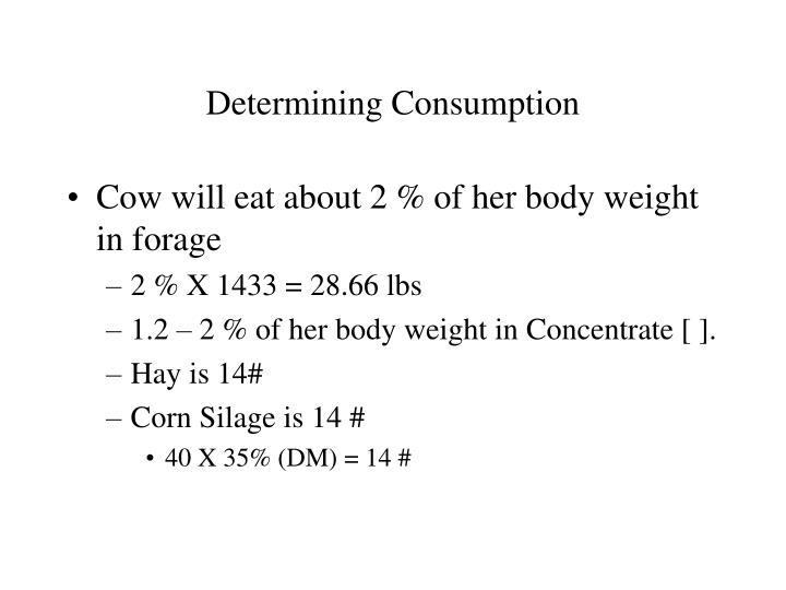 Determining Consumption