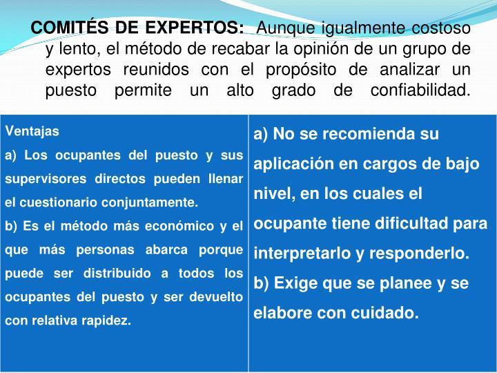 COMITÉS DE EXPERTOS: