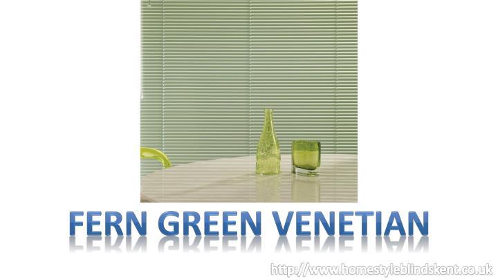 FERN GREEN VENETIAN