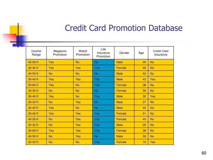 Credit Card Promotion Database