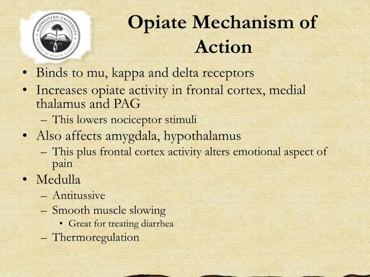 Opiate Mechanism of Action