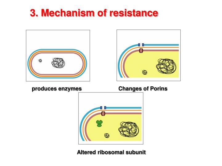 3. Mechanism of resistance