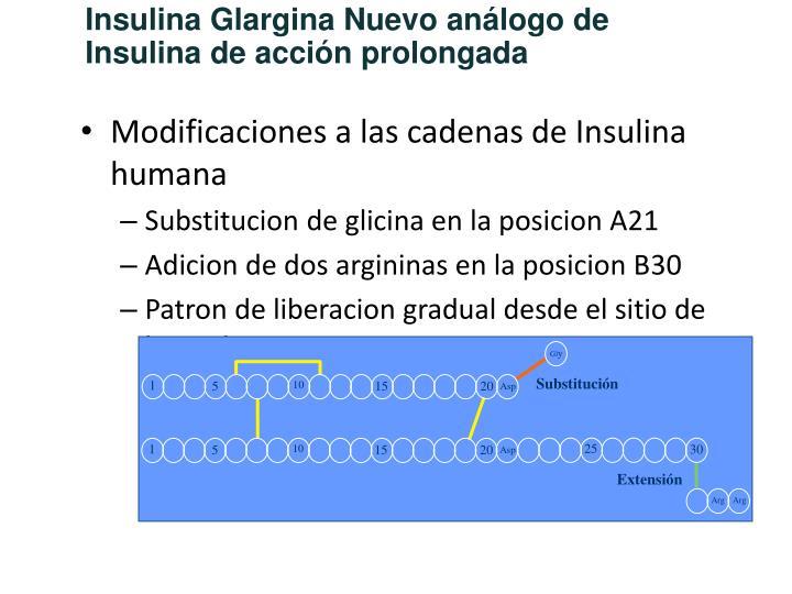 Insulina Glargina Nuevo análogo de Insulina de acción prolongada