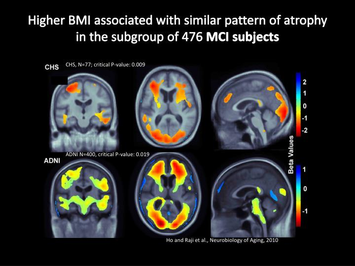Higher bmi associated with similar pattern of atrophy in the subgroup of 476 mci subjects