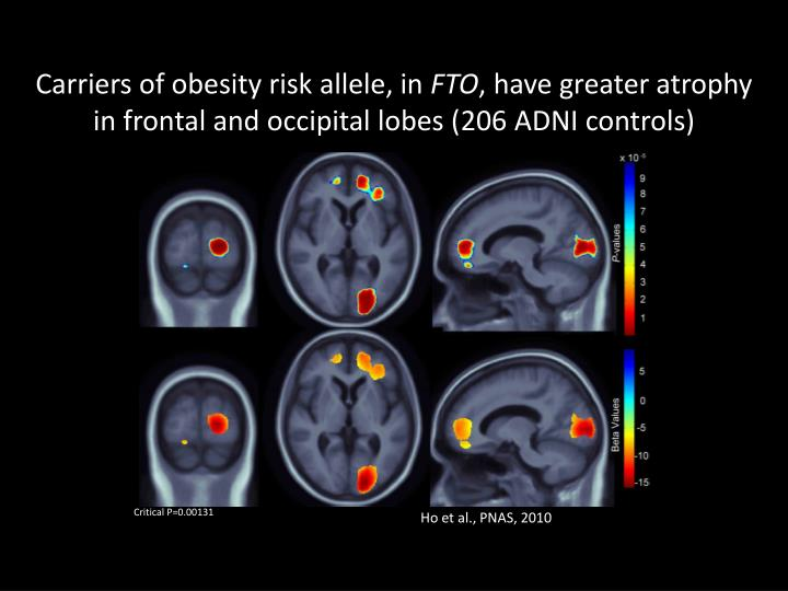 Carriers of obesity risk allele, in