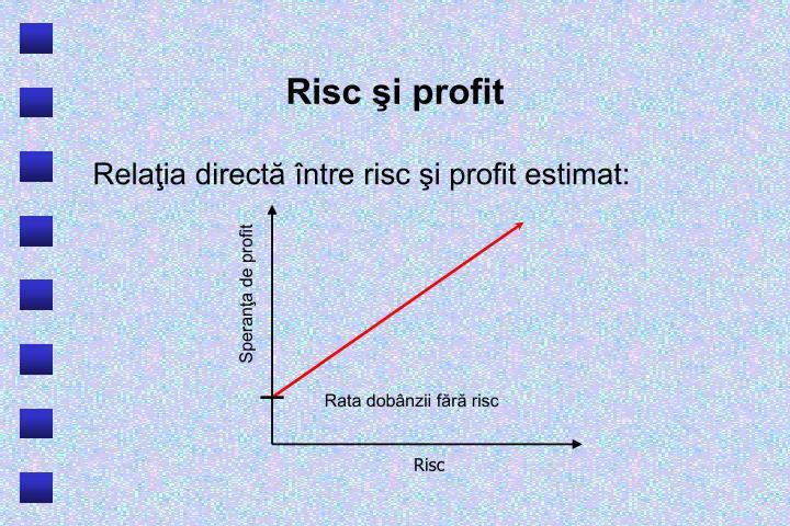 Risc şi profit