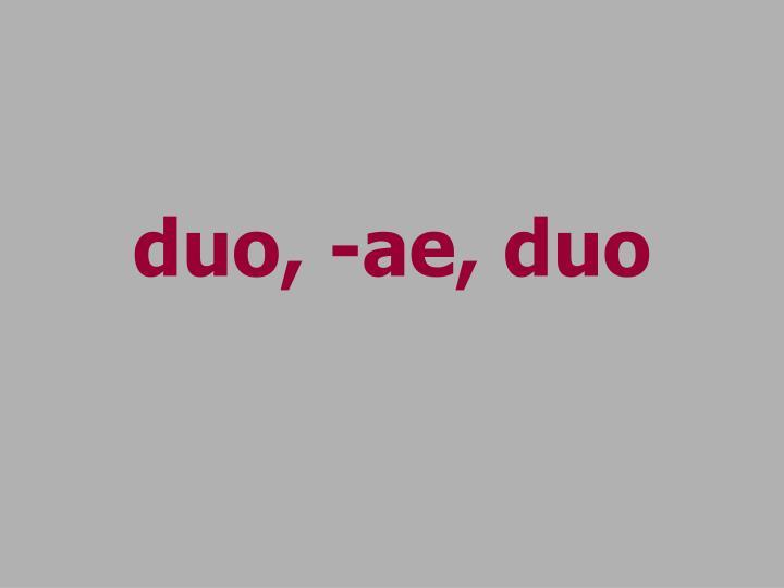 duo, -ae, duo