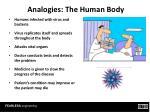 analogies the human body