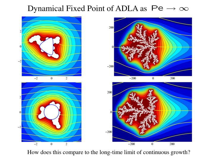 Dynamical Fixed Point of ADLA as