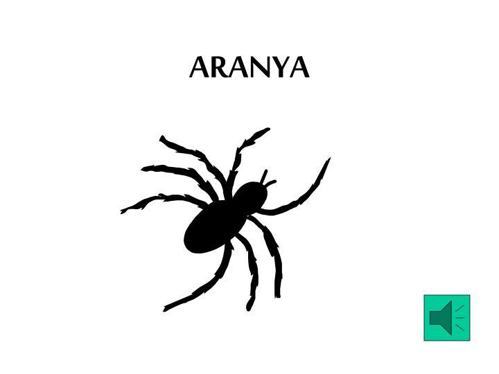 ARANYA