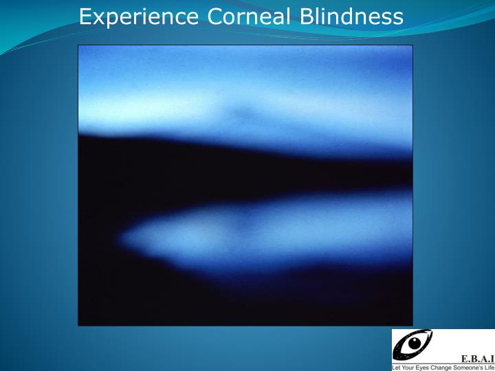 Experience Corneal Blindness