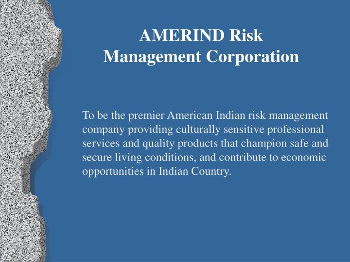 AMERIND Risk