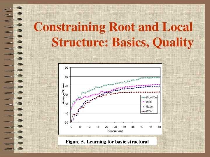 Constraining Root and Local Structure: Basics, Quality
