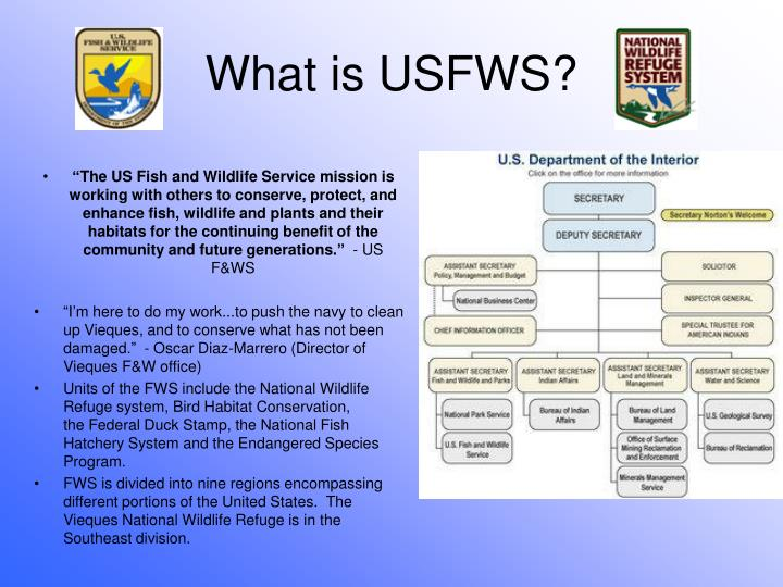 Ppt United States Fish Wildlife Service And The