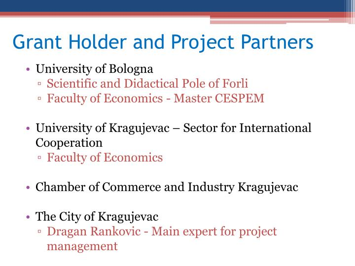 Grant Holder and Project Partners