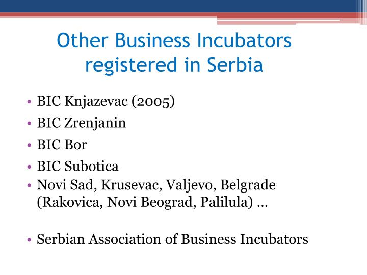 Other Business Incubators registered in Serbia