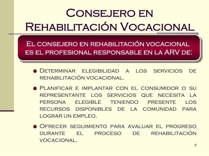 Consejero en Rehabilitación Vocacional