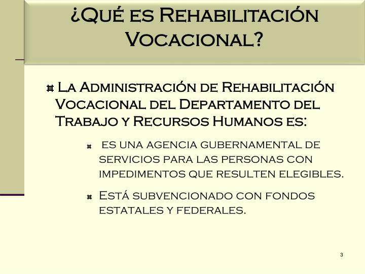 ¿Qué es Rehabilitación Vocacional?