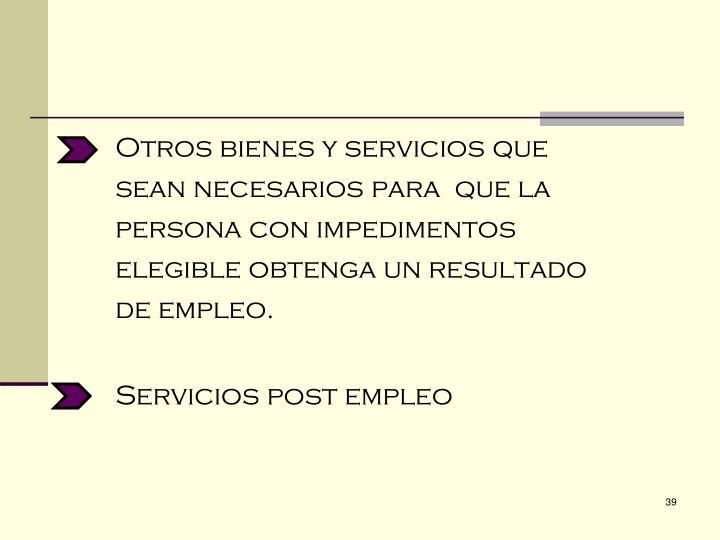 Otros bienes y servicios que