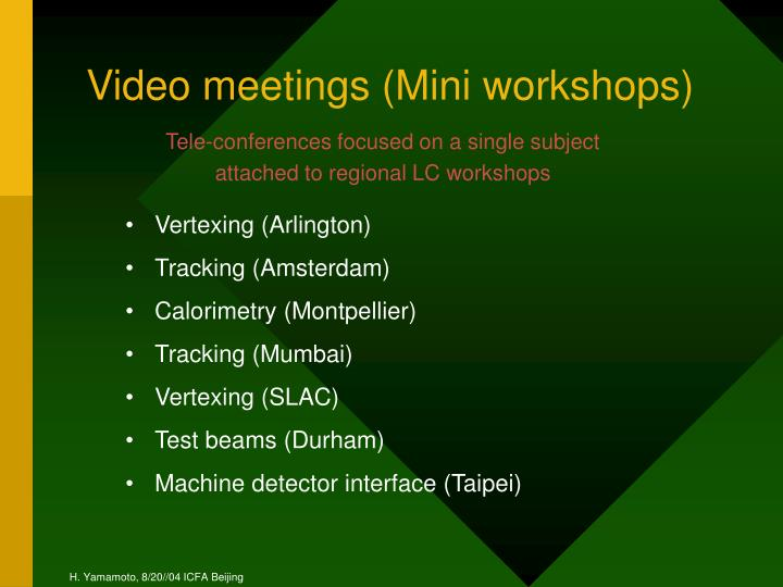 Video meetings (Mini workshops)