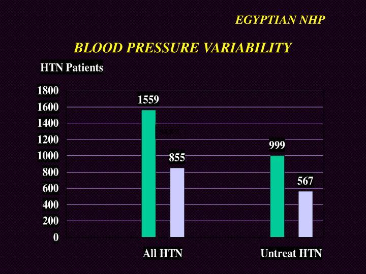 EGYPTIAN NHP