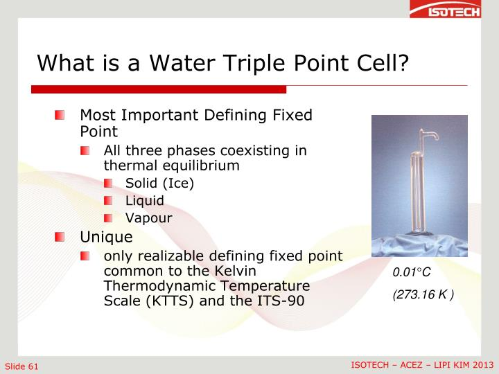 What is a Water Triple Point Cell?