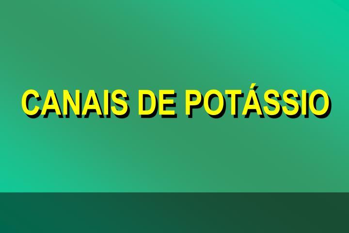 CANAIS DE POTSSIO